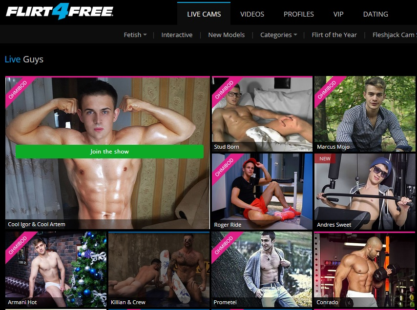 Amazing Gay Webcams on Flirt4Free Website